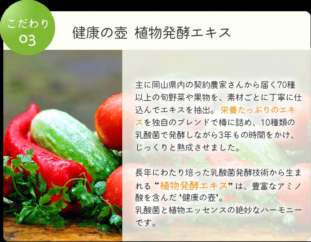 健康の壺 植物発酵エキス